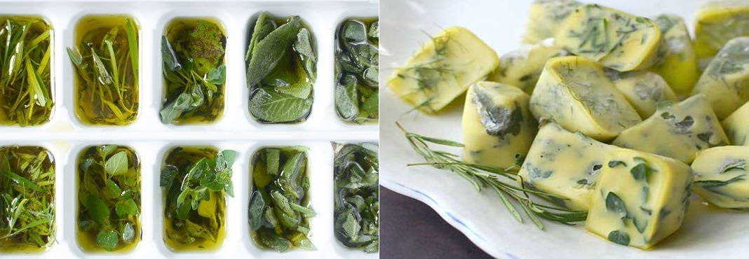 how-to-freeze-herbs-in-olive-oil
